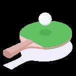 Logo PingPong