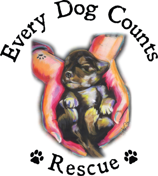 Every Dog Counts Rescue