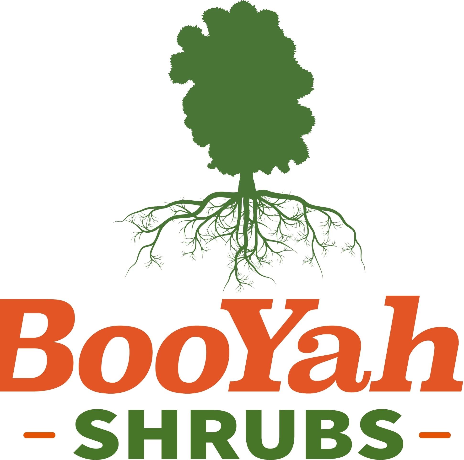 Booyah! Shrubs LLC