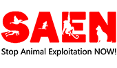 Stop Animal Exploitation Now