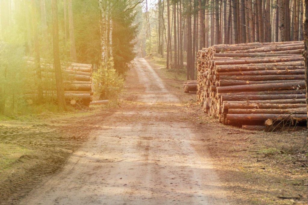 Wasa Trädfällning kund Smartproduktion