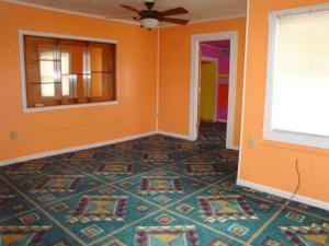 Phoenix carpet 2
