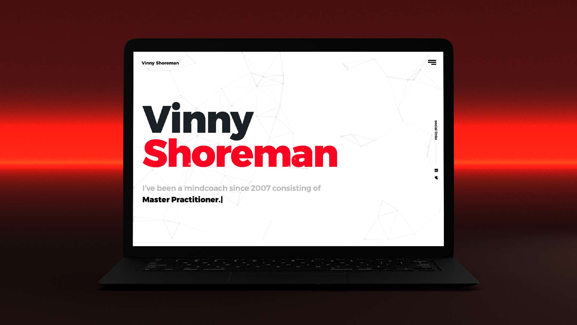 vinny shoreman website 1