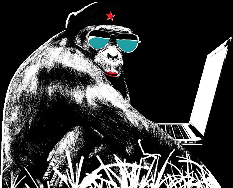 A Bonobo rebel on a podcast