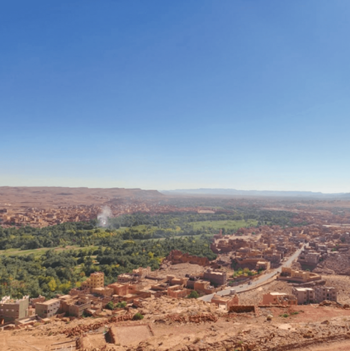 Social entrepreneurship is a dark horse in economic development. Read about the powerful impact social entrepreneurship can have in developing countries and a case study of how social entrepreneurship transformed Morocco's Argan Oil industry.