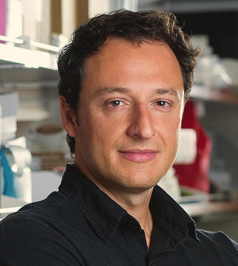 Neurônios em um prato: a criação de modelos para estudar Celular e tratar o autismo