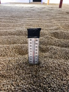 thermometer on the barley