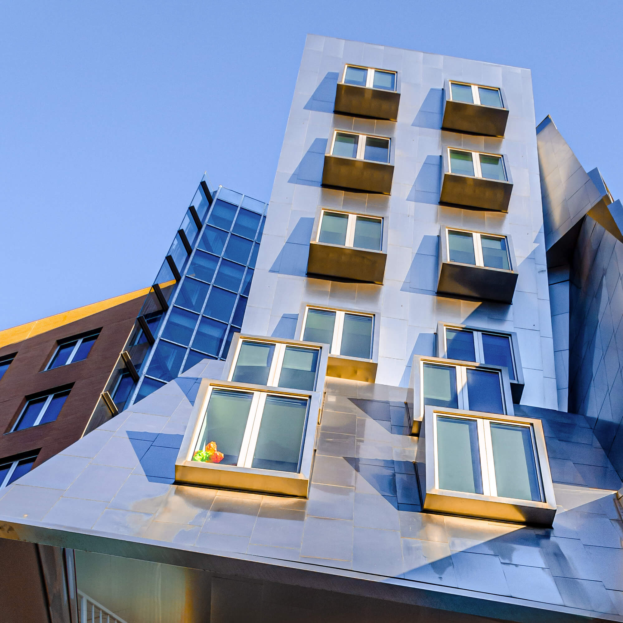 architecture photographie photographe paris Come bocabeille studio cob photo frank gehry ray and maria stata center cambridge
