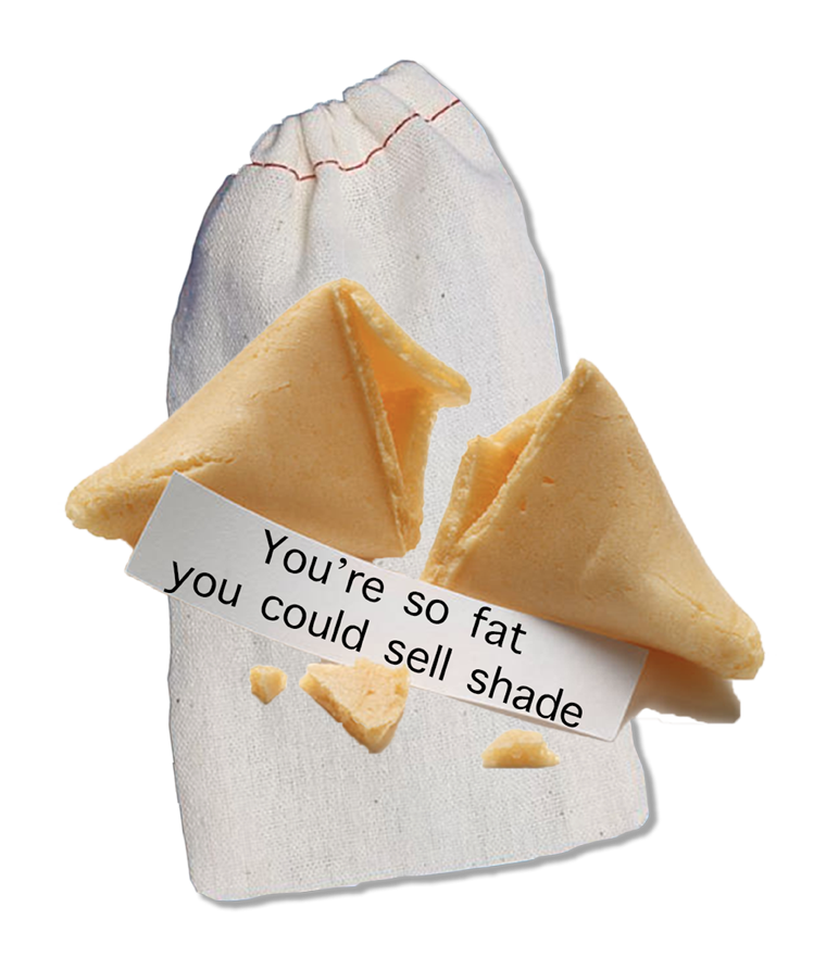 Offensive custom fortune cookies to be used as a gag gift for white elephant Christmas gifts or funny gifts in general.