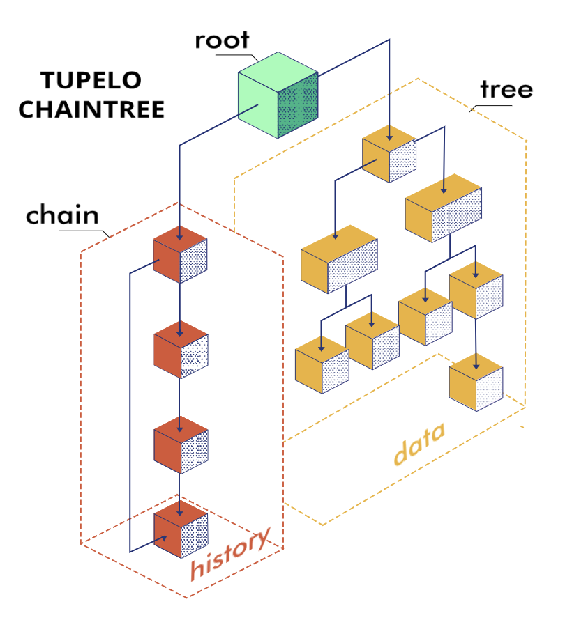 ChainTree Diagram