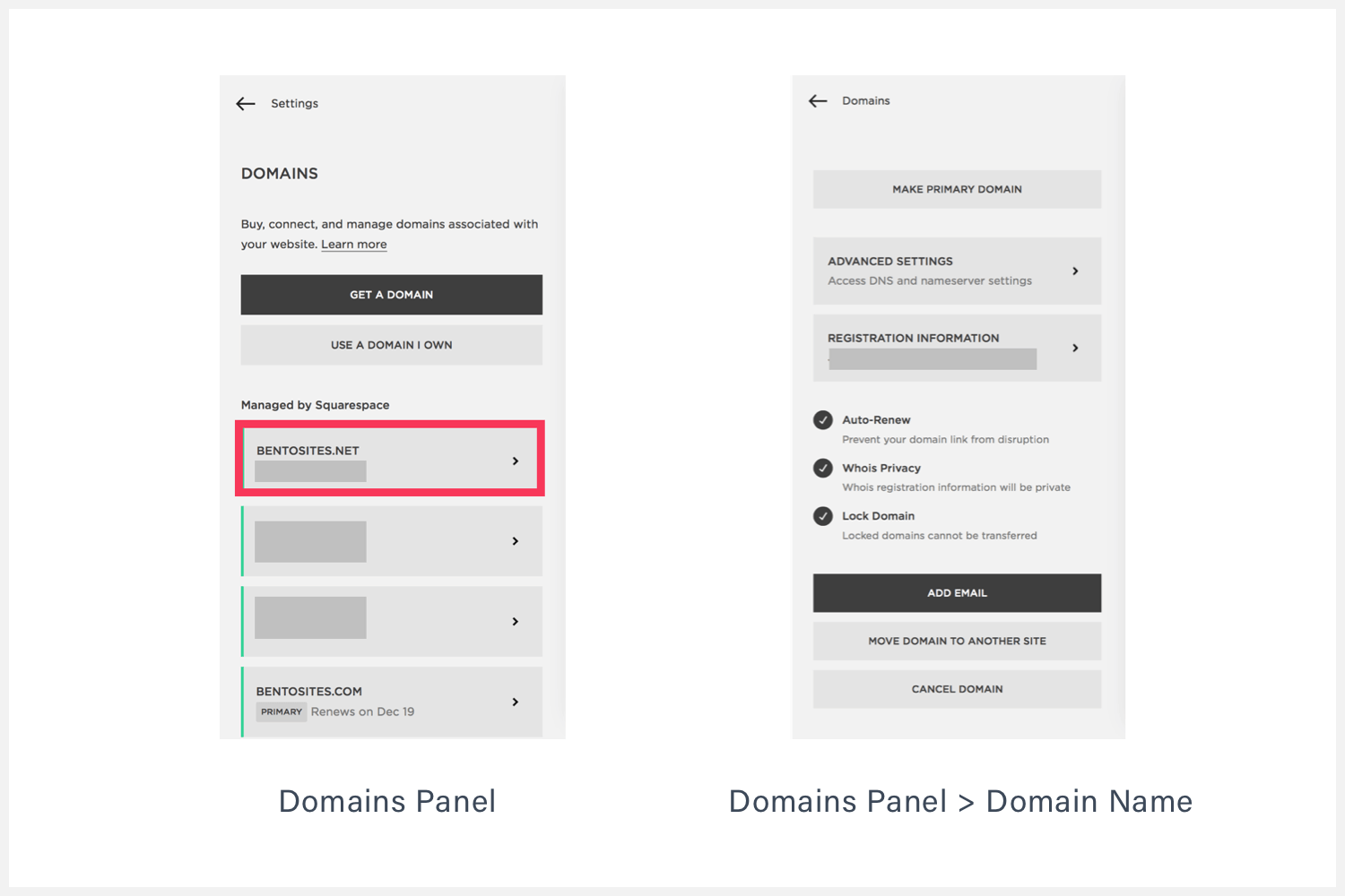 Squarespace Domain's webpage – Domains Panel