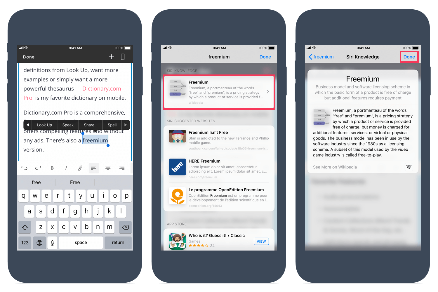 Using the Look Up on a webpage on iOS