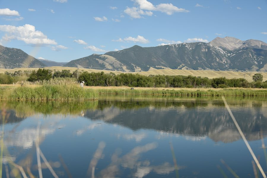 Fly fishing pond at Madison Valley Ranch with angler in the grass.