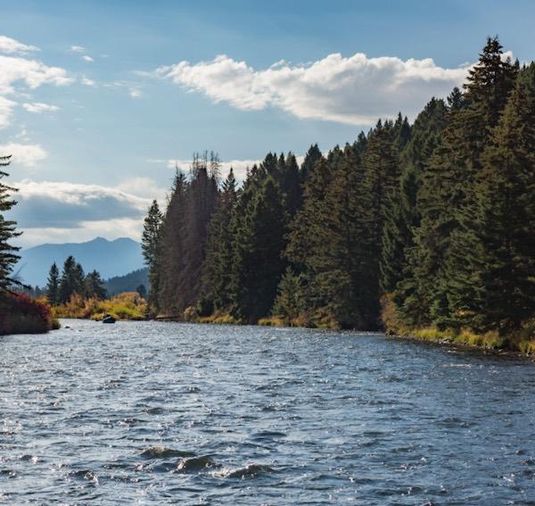 madison river scenic boat trips