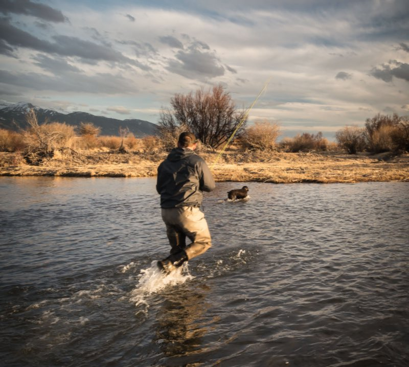 Fly fishing with a dog