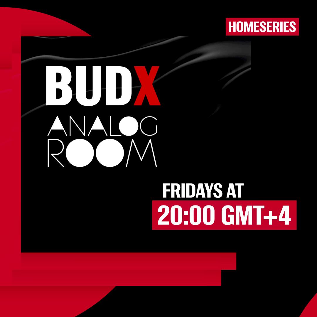 budx analog room artwork