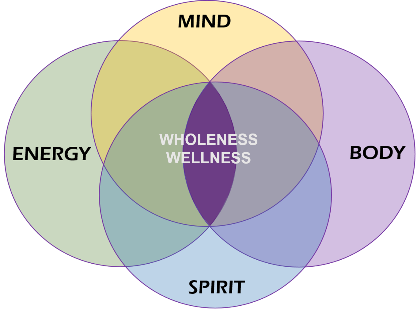 Graphic showing biopsychosocial model of care