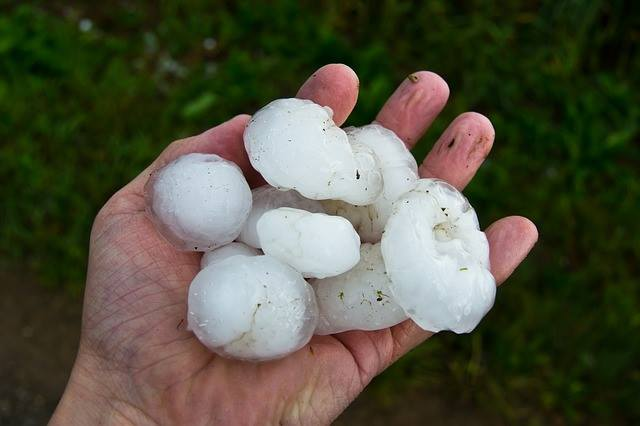 Big hail picked up after Fort Smith hail storm.