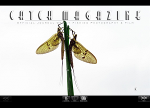 Screen shot of the cover of this month's Catch.