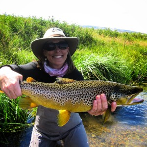 Mitchell Brown Trout