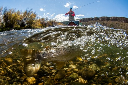 Fly Fishing the Madison River