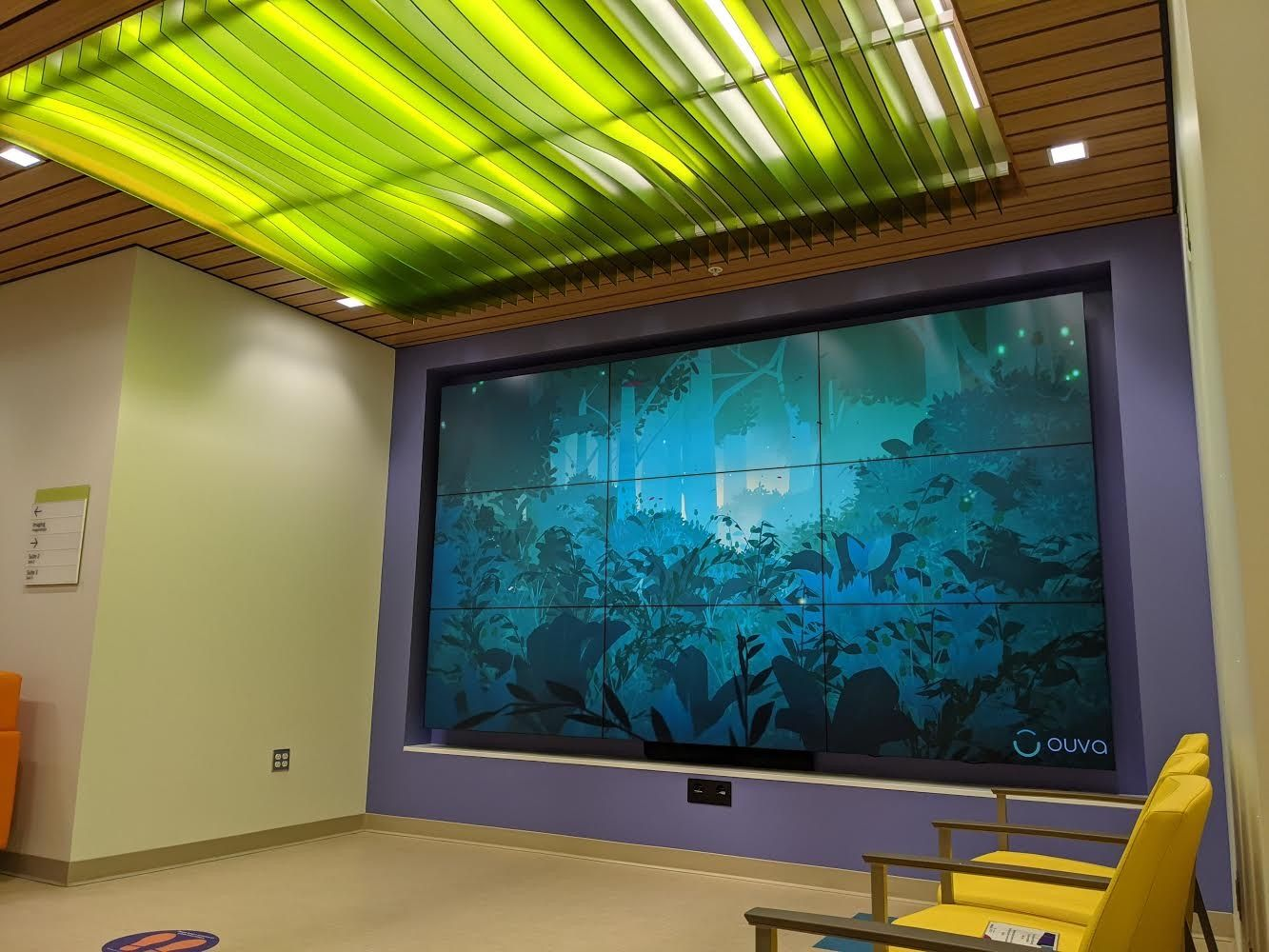 Interactive video wall at Miller Children's Hospital showing a lush nature scene