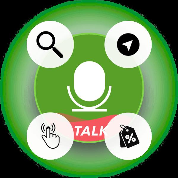 Slang In-App Voice Assistant Features