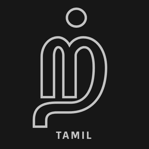 slang multilingual supports tamil