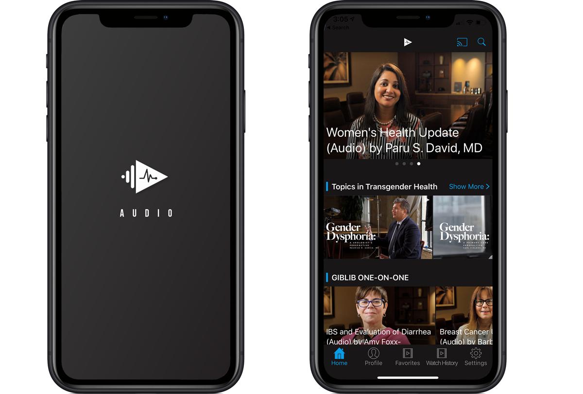 GIBLIB audio app
