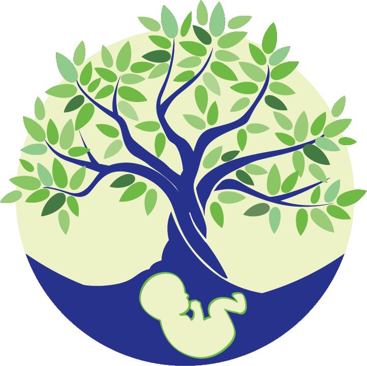 Verloskundigenpraktijk De Geboorteboom logo