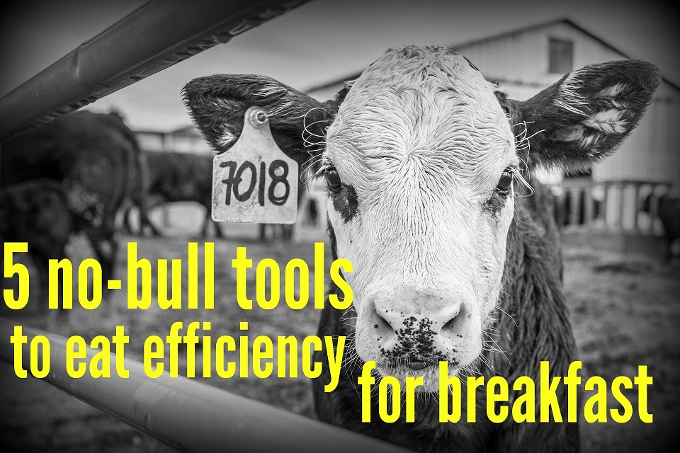 5 No-Bull Tools to Eat Efficiency for Breakfast