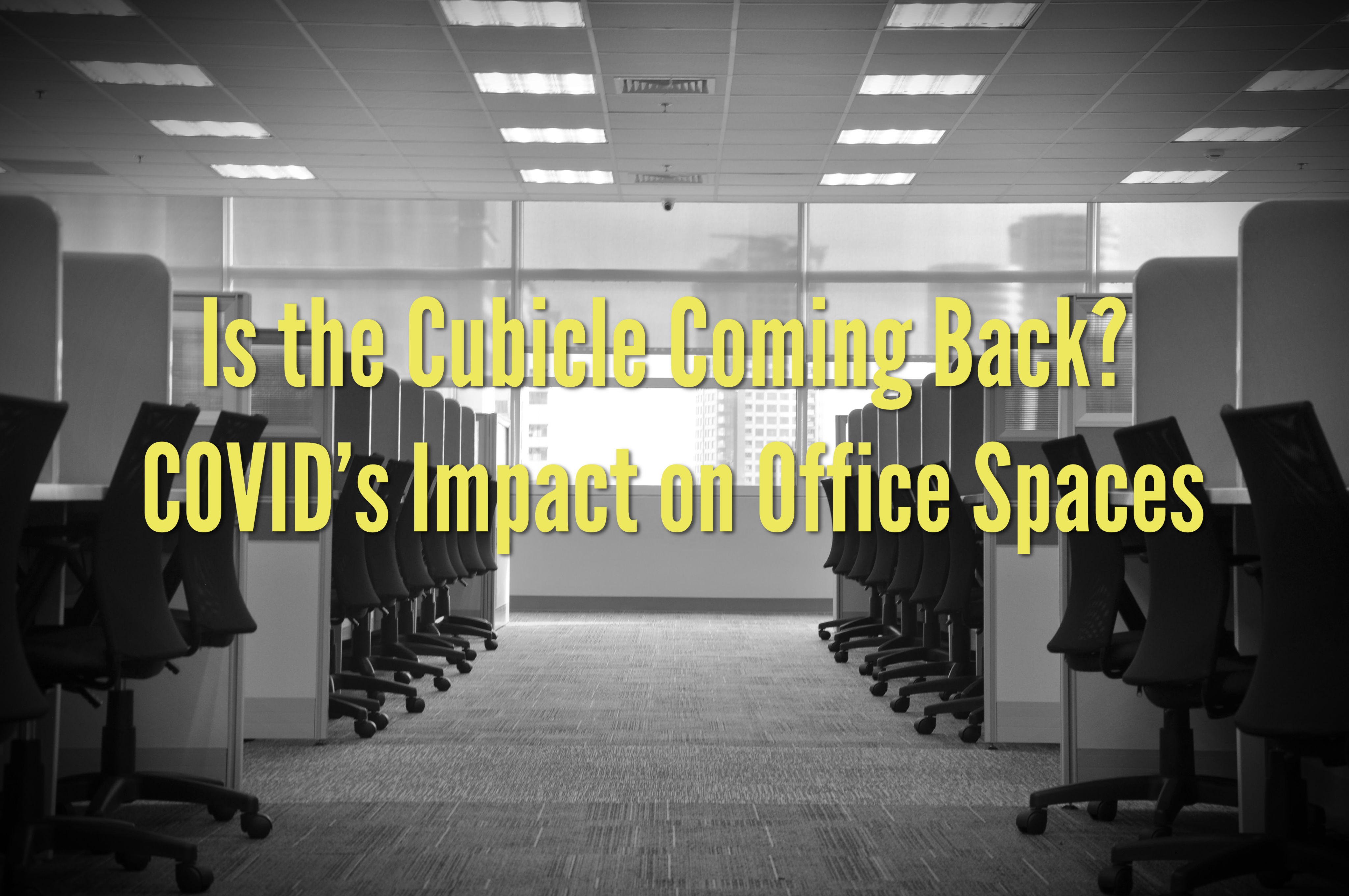 Is the Cubicle Coming Back? COVID's Impact on Office Spaces