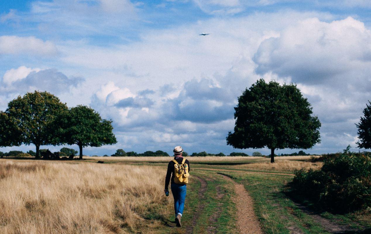 doğada yürüyen bir adam