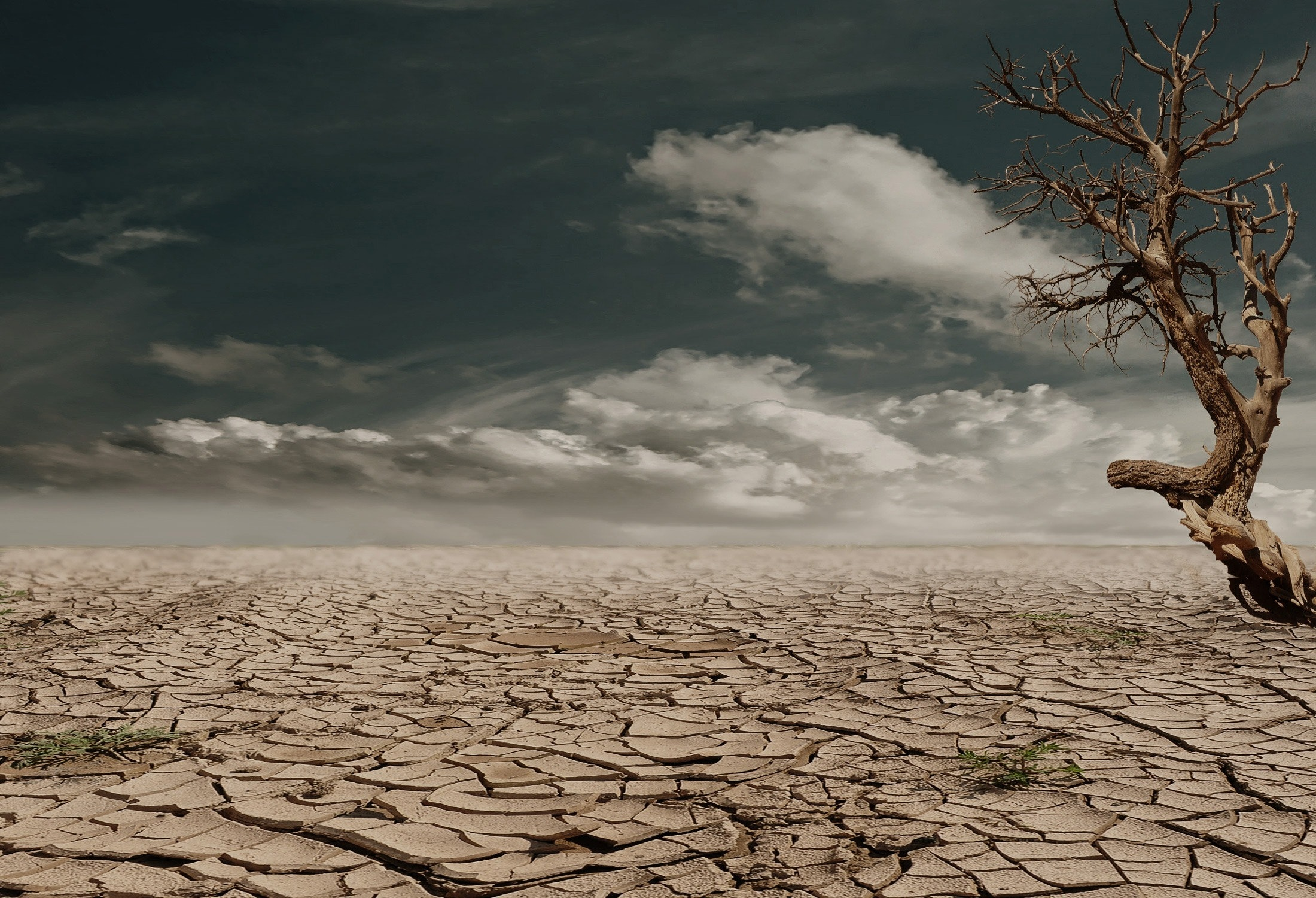 kuraklık iklim değişikliği