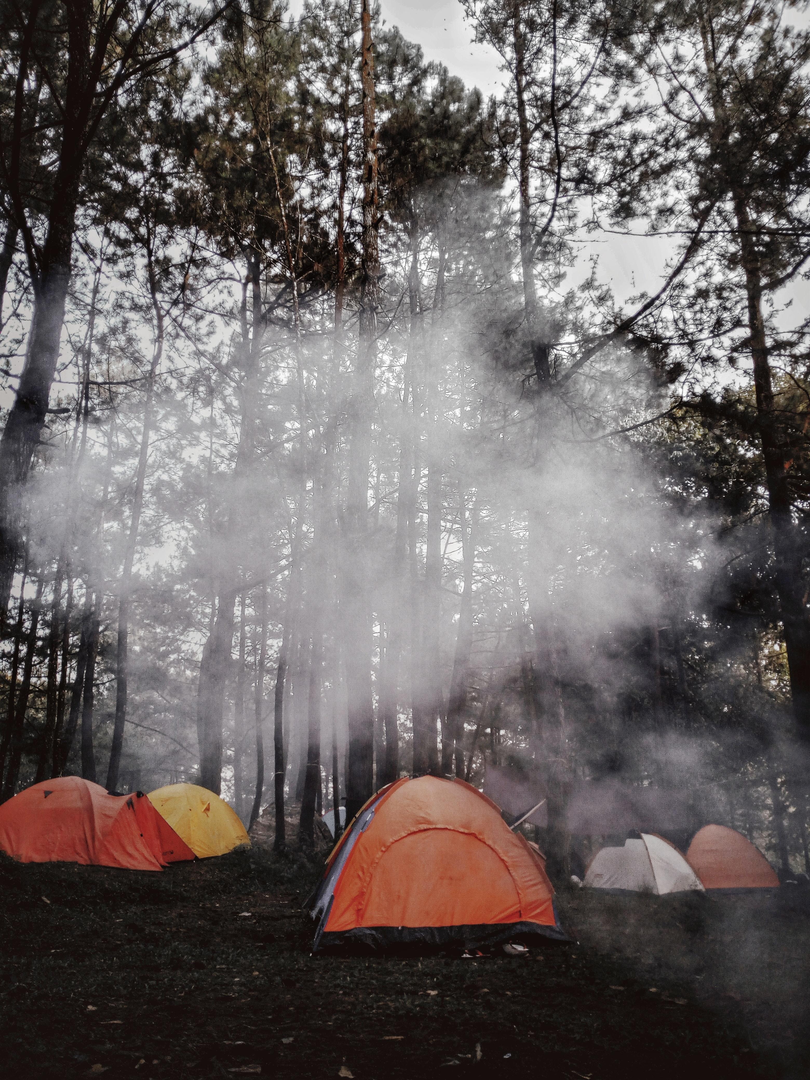 çadır doğa kamp