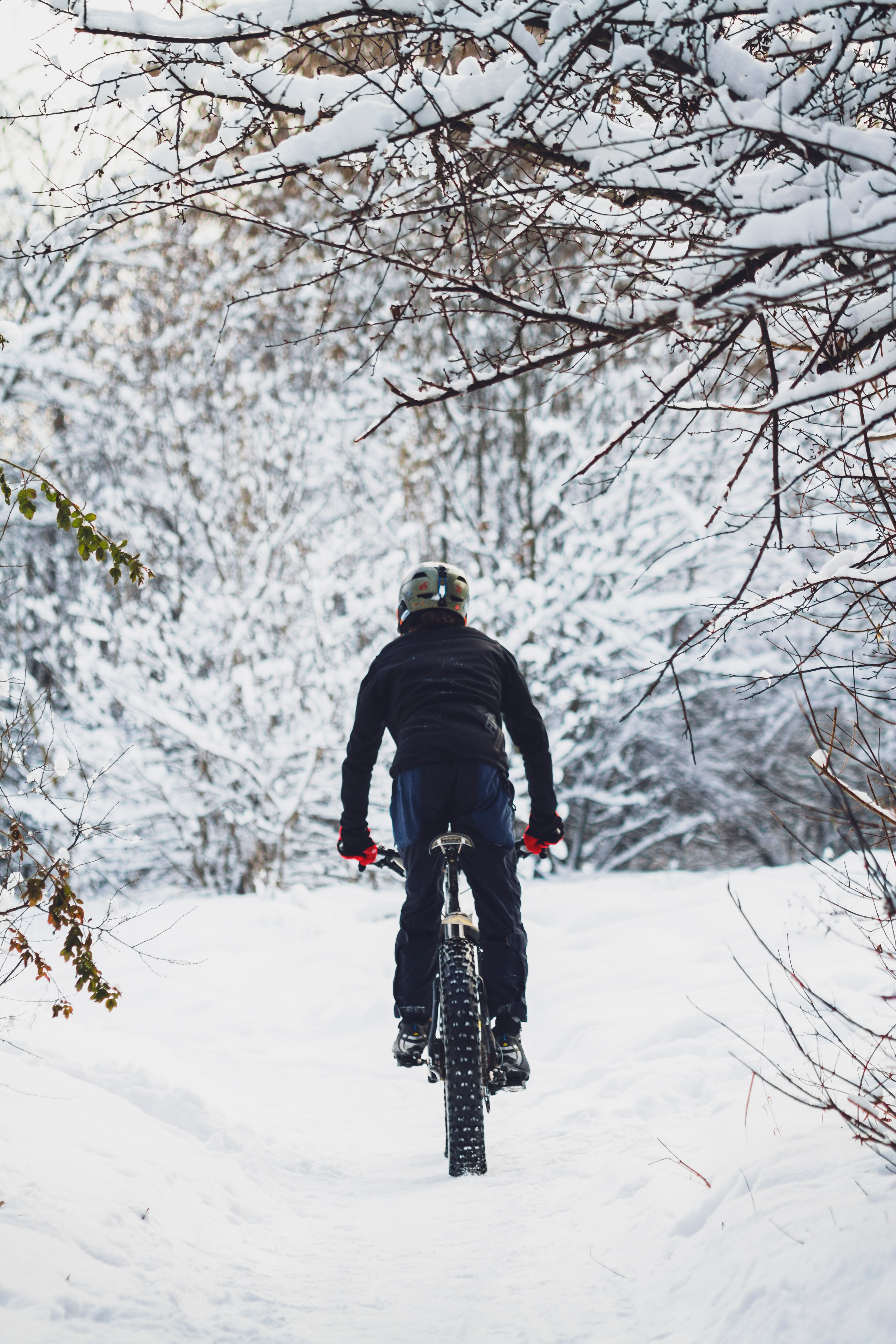 Valdemars Magone dağ bisikleti macerita