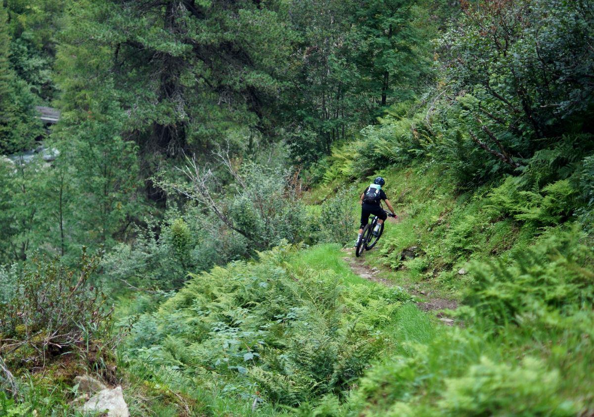 Sam Marx dağ bisikleti macerita