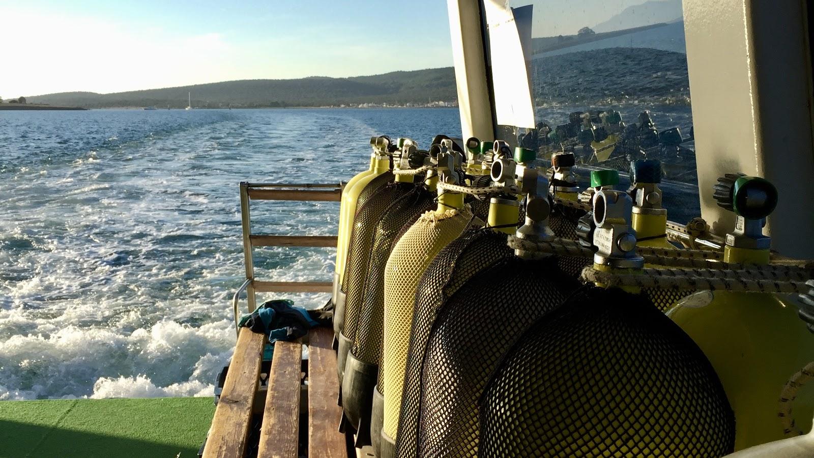 Tüplü dalış deniz ayvalık