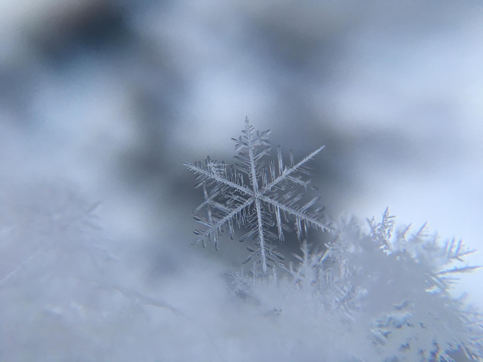 kar şekilleri