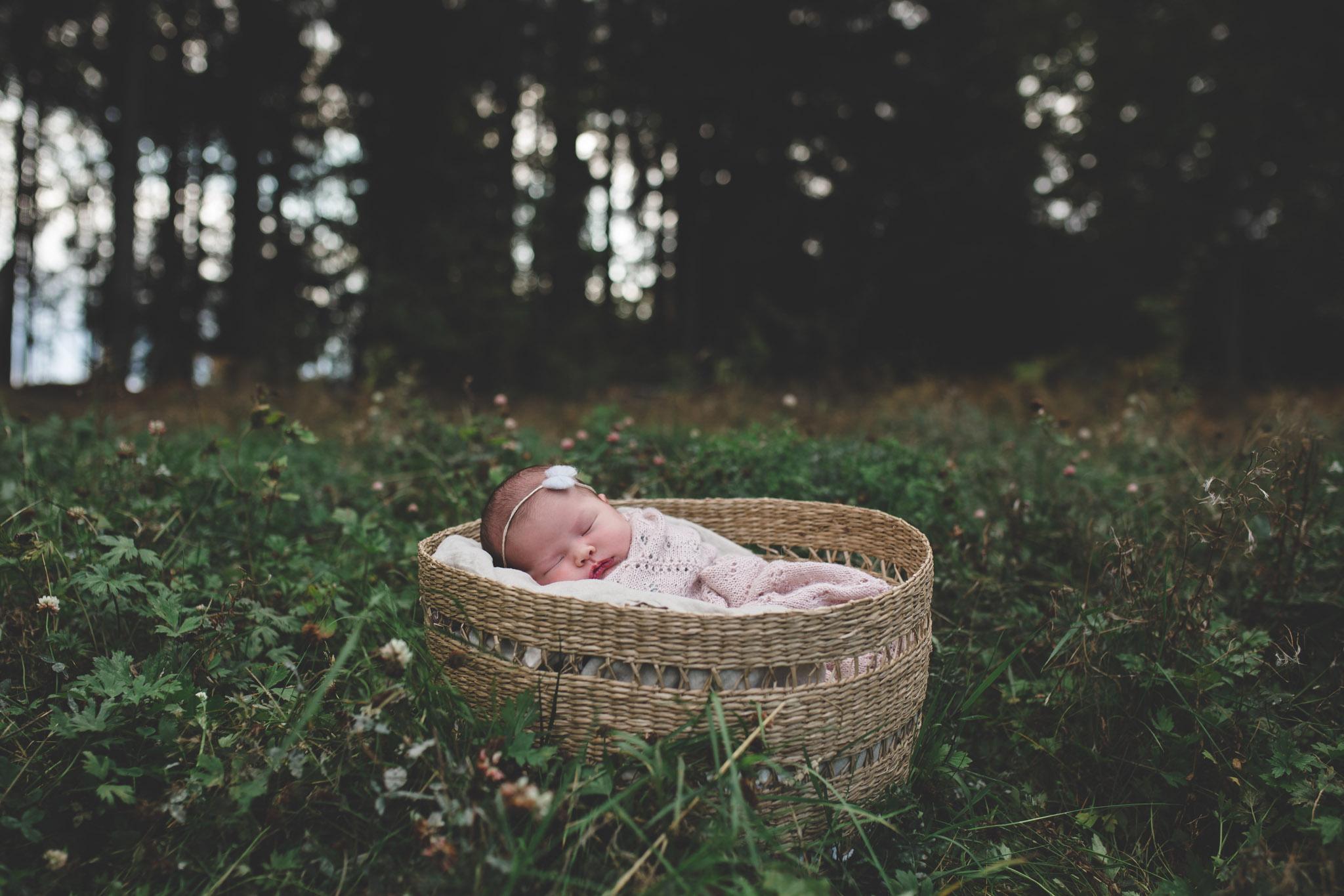 Nyfødtfotografering - kurv, natuur - Fotograf Ida Hvattum