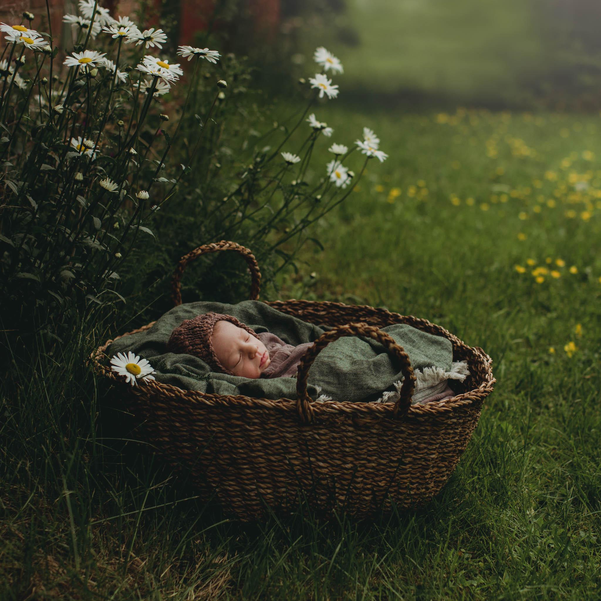 Nyfødtfotografering - kurv, natur - Fotograf Ida Hvattum