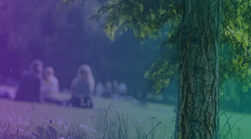 Imagem de um parque com pessoas sentadas na grama.