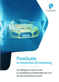 PUREGUIDE TO INTERACTIVE 3D STREAMING