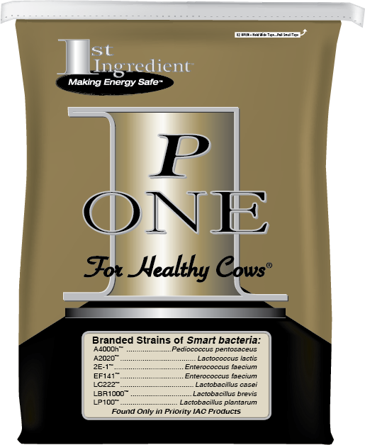 P-one, for healthy cows