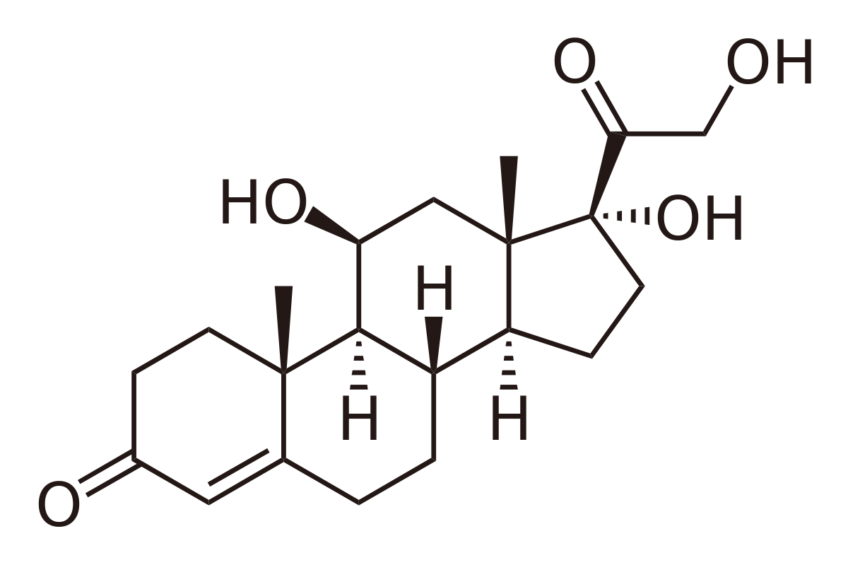 Black chemical structure of Cortisol featuring Hydrogens and Oxygen atoms
