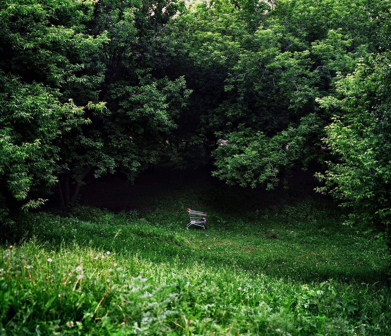 © Julia Abzaltdinova (Moscow, Russia) @abz_julia | Noise in the park