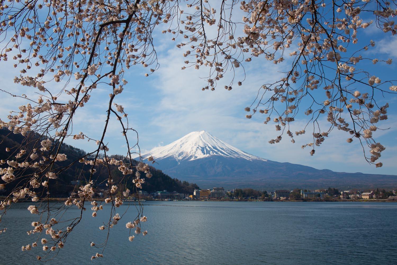 © Aliona Londono (Valencia, Spain) @aliona_londono | Mount Fuji