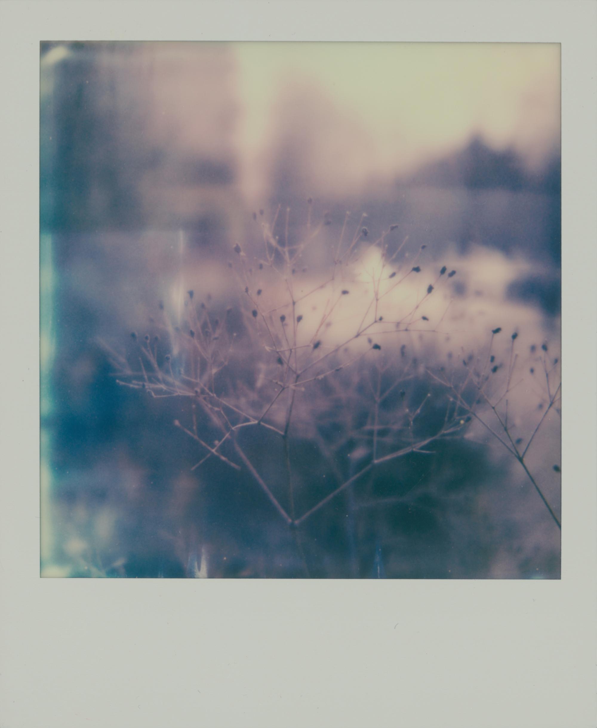 © Noemi Heidel (Berlin, Germany) | The Space Between Thoughts
