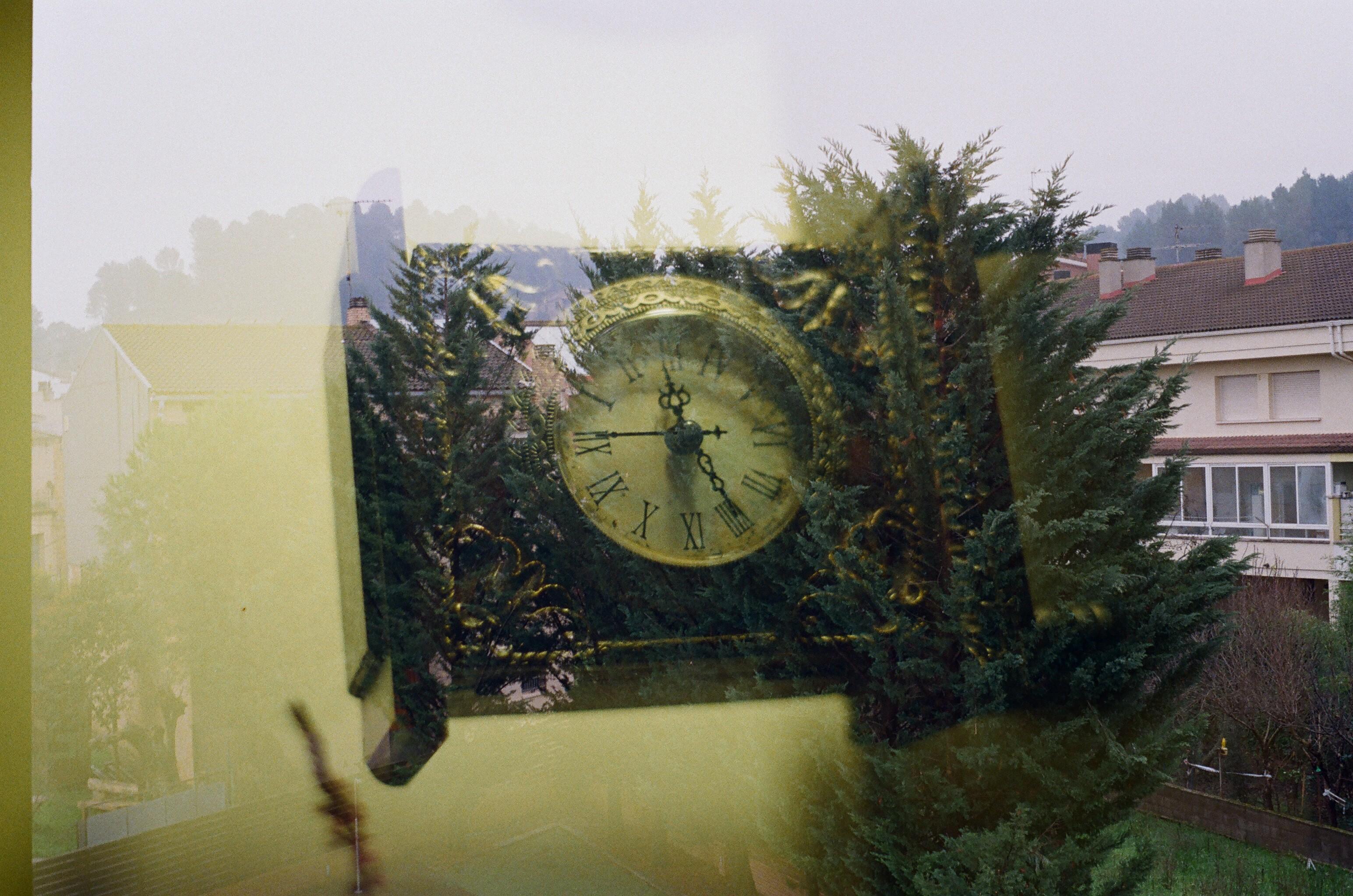 © Natàlia Muñoz - Time flows and blooms