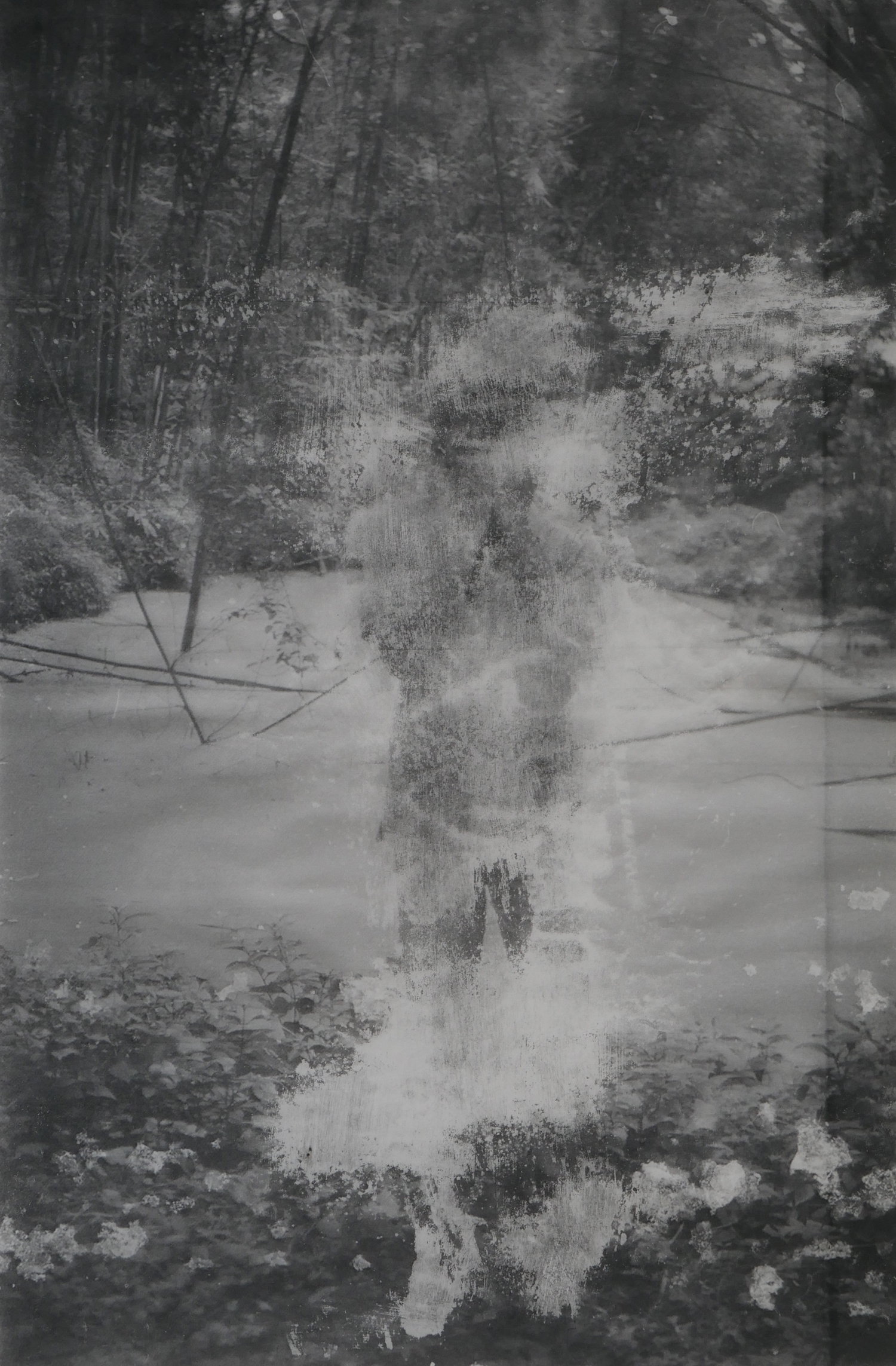 ©Prapat Jiwarangsan - In the Asylum Garden